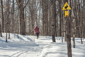Skiing the Rabbit trail