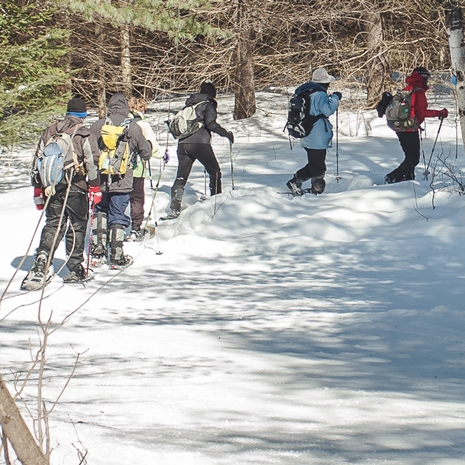 Enjoying the snowshoe trail